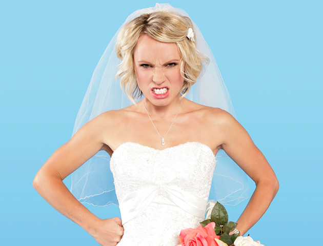 what is a bridezilla