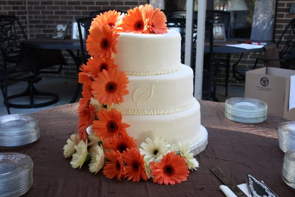 wedding cake pictures with gerbera daisies what does gerbera definition of gerbera 23449
